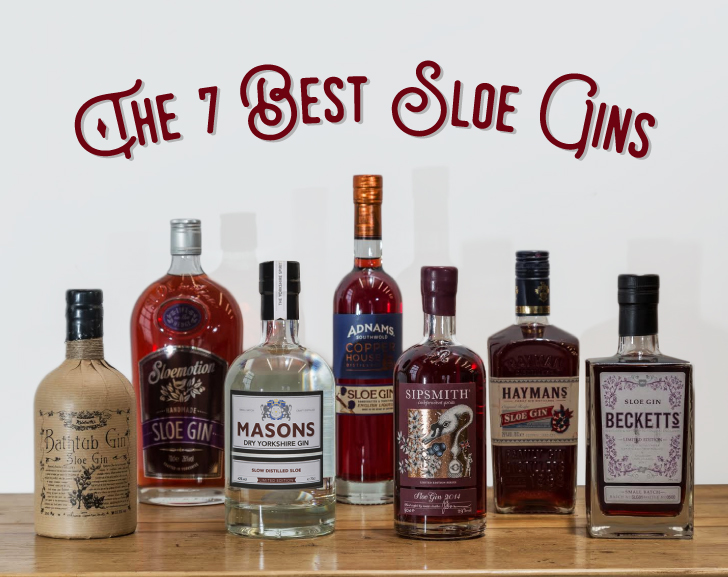The 7 Best Sloe Gins