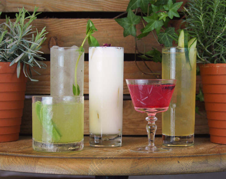 5 Gin Cocktails from the Garden