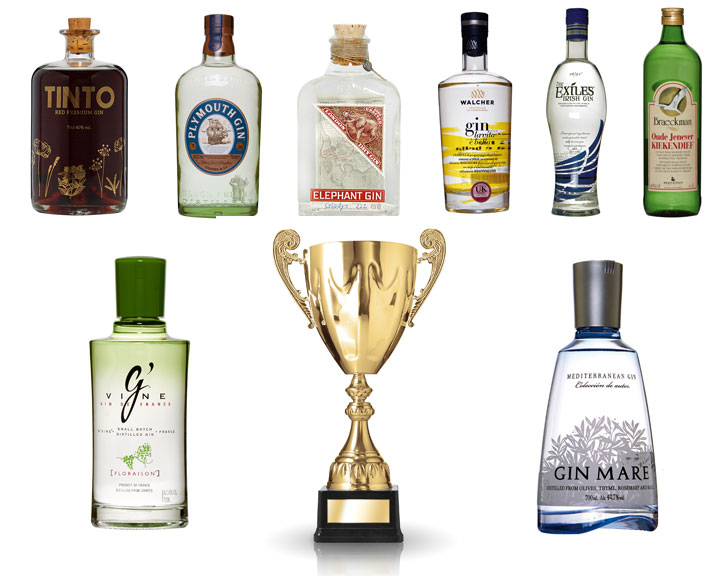 What if Gins Competed in a European Championship?