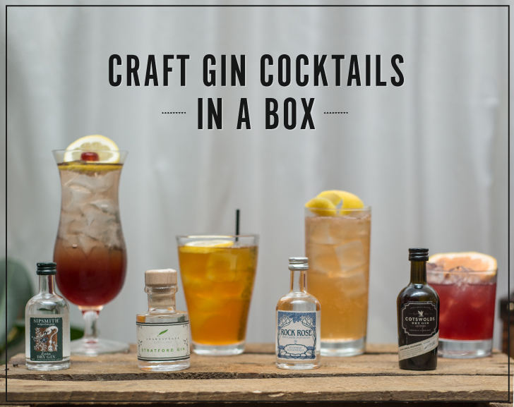 Craft Gin Festival in a Box Cocktails